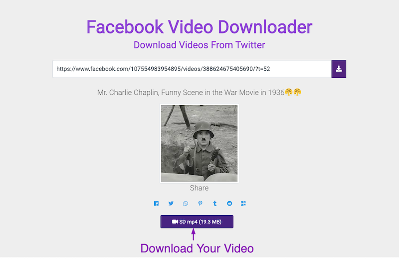 Facebook Video Download Step 3